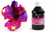 Teinture Plumes & Fleurs soie H Dupont